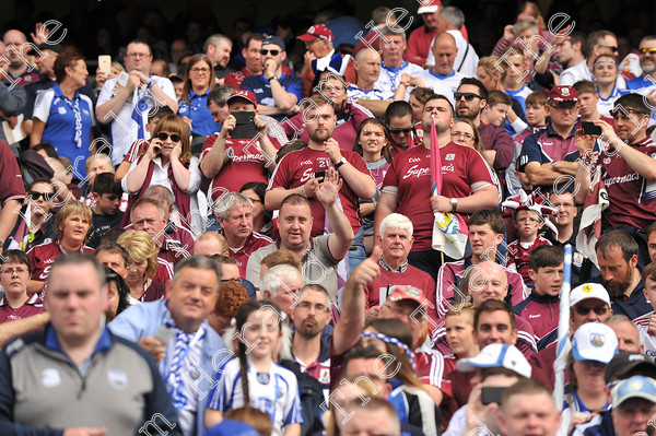 Galway-Hurling-Supporters-17785 