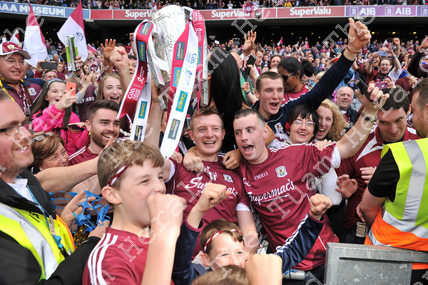 Galway-Senior-Hurling-celebrations-17928 