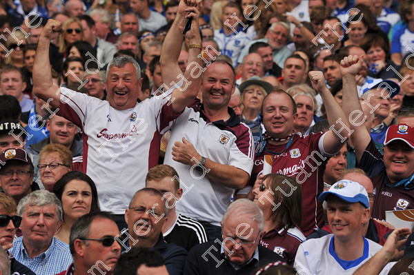 Galway-Hurling-Supporters-17820   Galway supporters celebrate after Galway win the All Ireland Hurling final at Croke PArk. Photo: Ray Ryan
